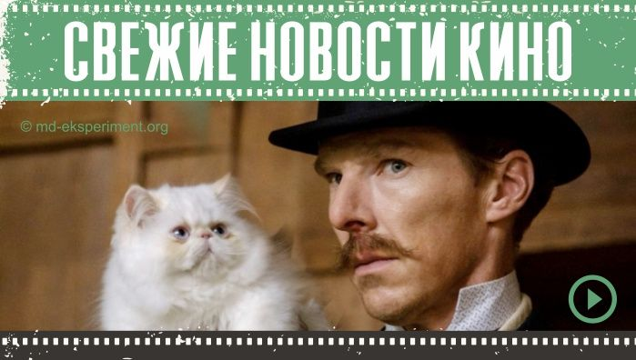 Новости кино за эту неделю 24.09.2021