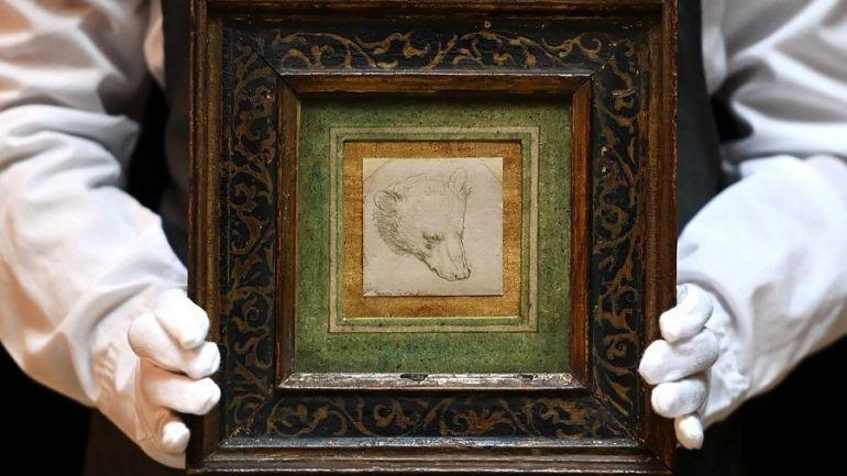 Малюнок «Голова ведмедя» Леонардо да Вінчі
