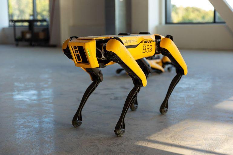 Робота-собаку от Boston Dynamics теперь может купить любой