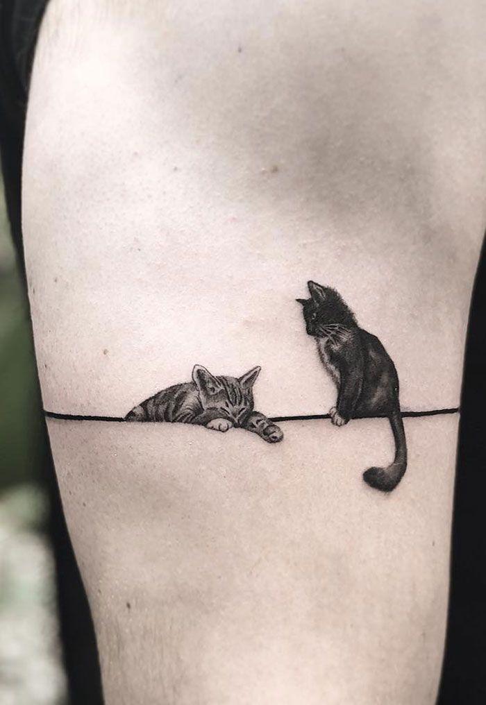 Два кота. Тату