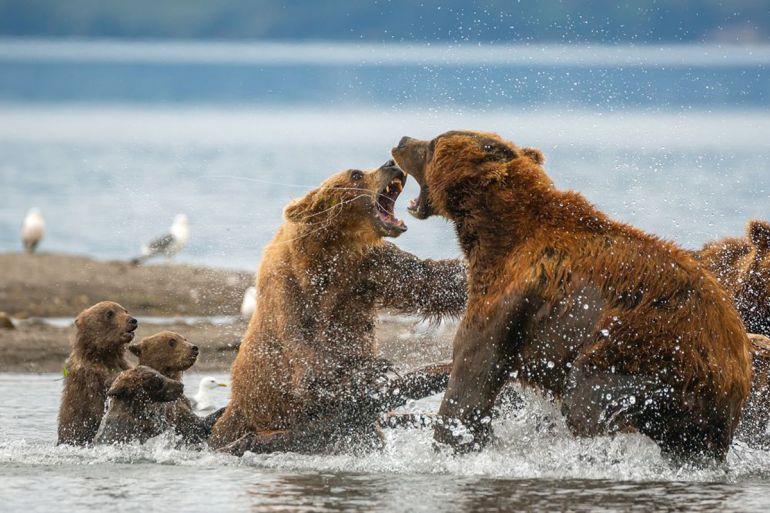 Выставка журнала «National Geographic Россия». Афиша 2020