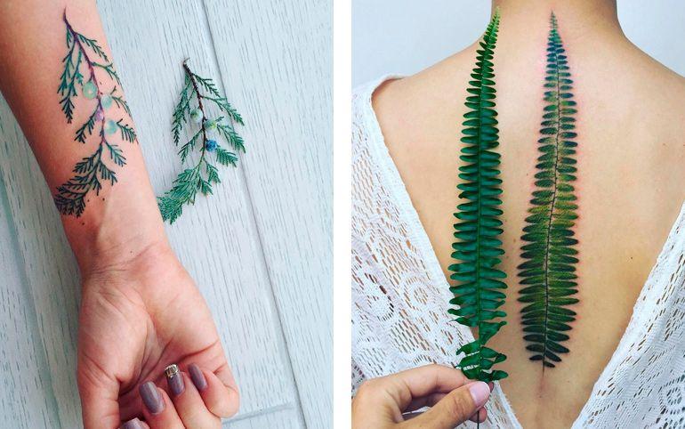 Растения на татуировках. Эскиз тату