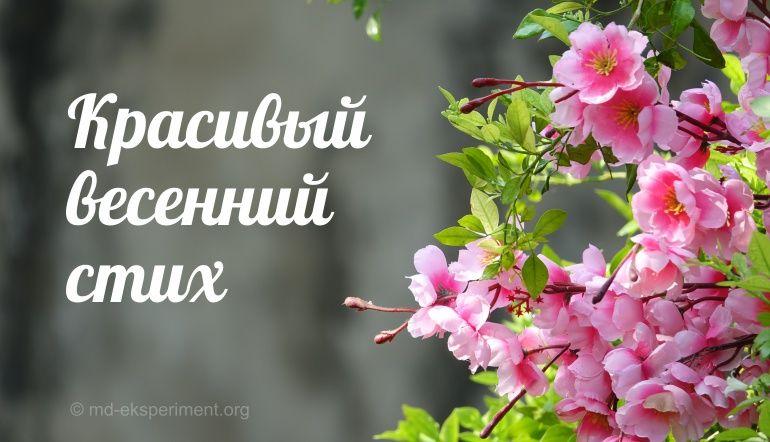 весенний стих читать