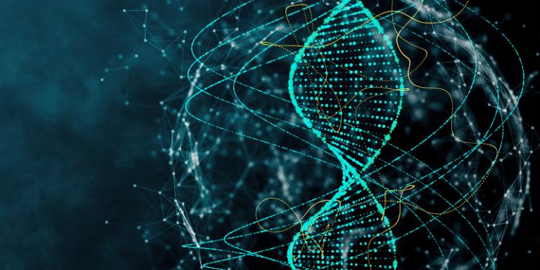 ДНК-тесты