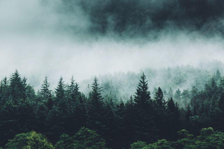 Красота природы в объективе Дэниела Кассона